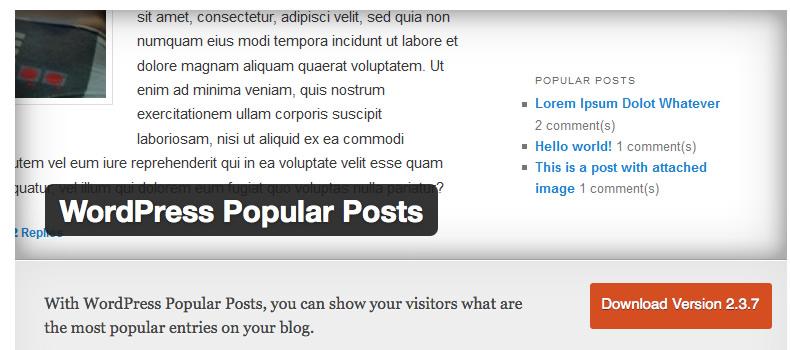 人気投稿記事リンクを表示させるWordpressプラグイン「WordPress Popular Posts」